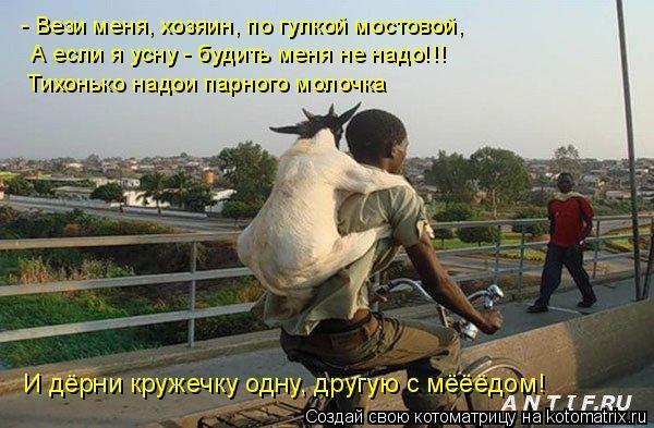 Котоматрица: - Вези меня, хозяин, по гулкой мостовой, А если я усну - будить меня не надо!!! Тихонько надои парного молочка И дёрни кружечку одну, другую с мё