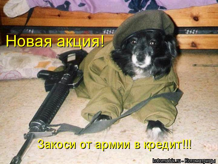 Котоматрица: Новая акция! Закоси от армии в кредит!!!