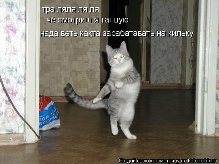 Котоматрица: тра ляля ля ля  чё смотриш я танцую  нада веть какта зарабатавать на кильку