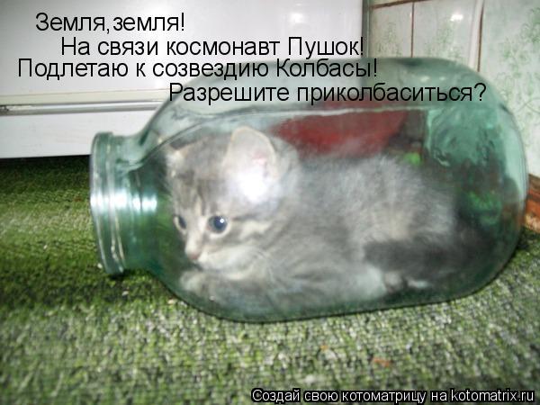 Котоматрица: Земля,земля! На связи космонавт Пушок! Подлетаю к созвездию Колбасы! Разрешите приколбаситься?