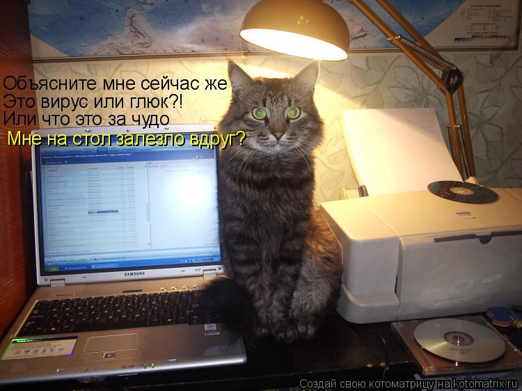 Котоматрица: Объясните мне сейчас же Это вирус или глюк?! Или что это за чудо Мне на стол залезло вдруг?