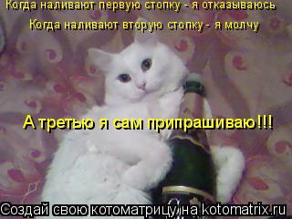Котоматрица: Когда наливают первую стопку - я отказываюсь Когда наливают вторую стопку - я молчу А третью я сам припрашиваю!!!