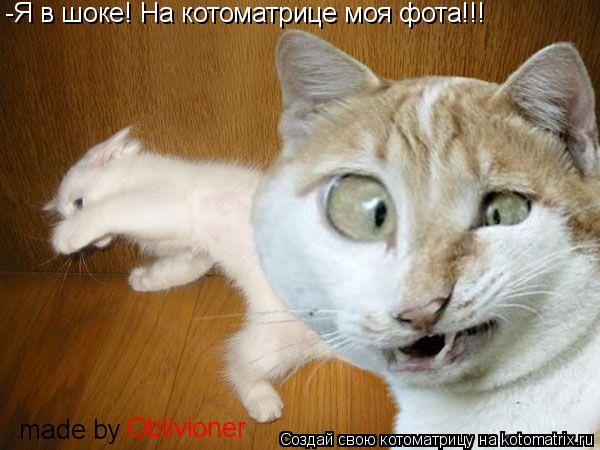 Котоматрица: -Я в шоке! На котоматрице моя фота!!! made by Oblivioner