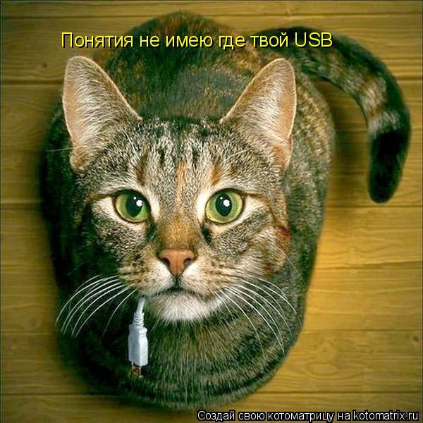 Котоматрица: Понятия не имею где твой USB