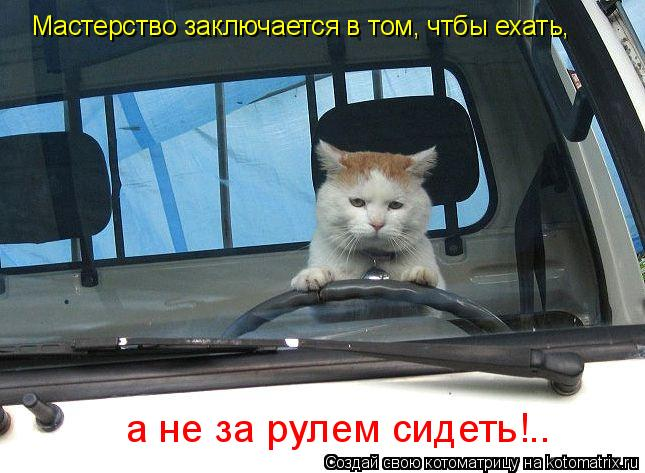 Котоматрица: Мастерство заключается в том, чтбы ехать, а не за рулем сидеть!..