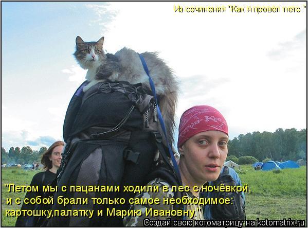 """Котоматрица: """"Летом мы с пацанами ходили в лес с ночёвкой, и с собой брали только самое необходимое: картошку,палатку и Марию Ивановну."""" Из сочинения """"Как"""