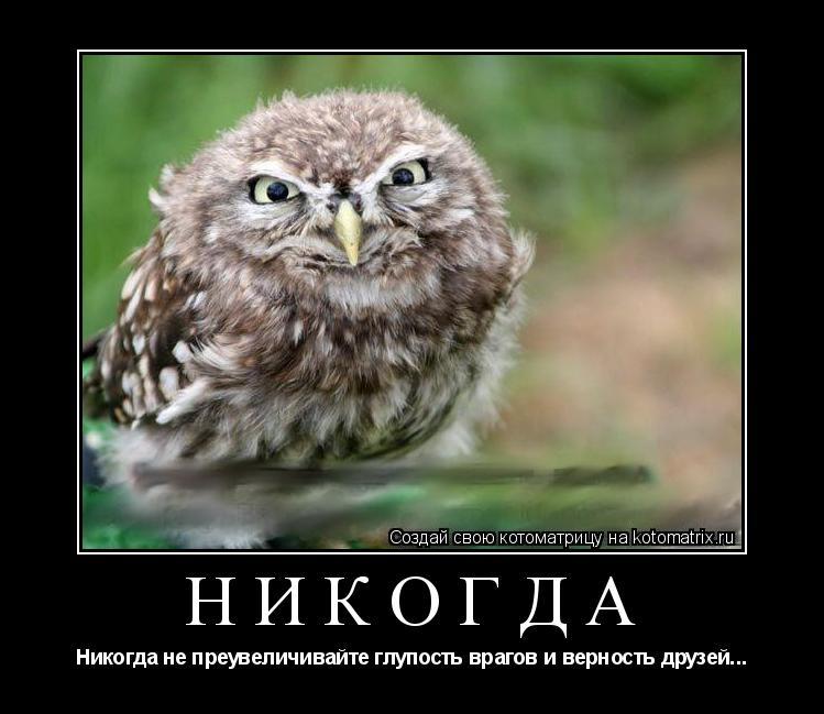 Котоматрица: НИКОГДА Никогда не преувеличивайте глупость врагов и верность друзей...