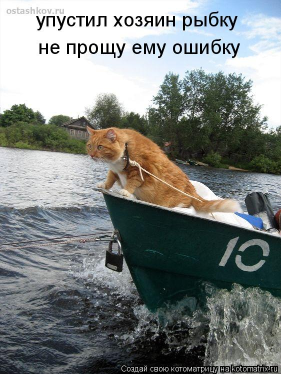 Котоматрица: упустил хозяин рыбку не прощу ему ошибку