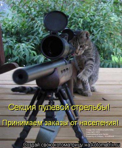 Котоматрица: Секция пулевой стрельбы! Принимаем заказы от населения!