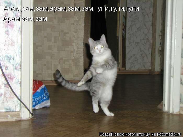 Котоматрица: Арам,зам,зам,арам,зам,зам,гули,гули,гули Арам,зам,зам