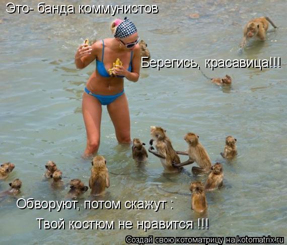 Котоматрица: Это- банда коммунистов Берегись, красавица!!! Обворуют, потом скажут : Твой костюм не нравится !!!