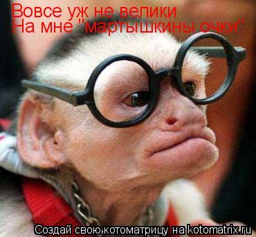 """Котоматрица: Вовсе уж не велики На мне """"мартышкины очки"""""""
