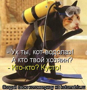 Котоматрица: - Ух ты, кот-водолаз! А кто твой хозяин? - Кто-кто? Кусто!