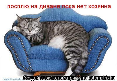 Котоматрица: посплю на диване,пока нет хозяина