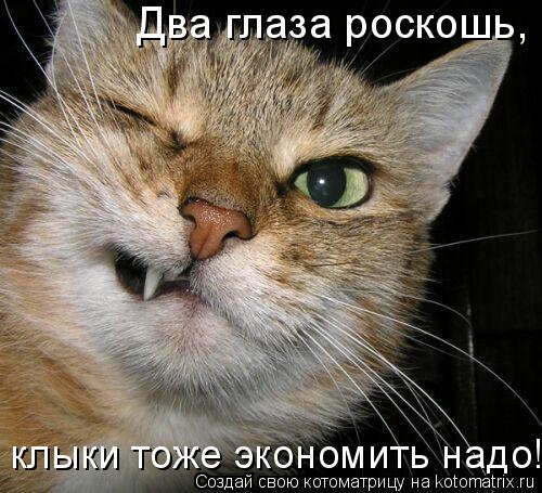 Котоматрица: Два глаза роскошь,  клыки тоже экономить надо!