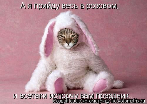 Котоматрица: А я прийду весь в розовом, и всетаки испорчу вам праздник...