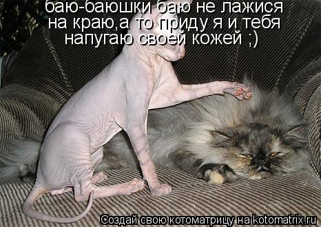 Котоматрица: баю-баюшки баю не лажися на краю,а то приду я и тебя напугаю своей кожей ;)