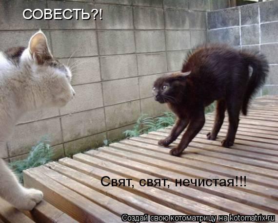 Котоматрица: СОВЕСТЬ?! Свят, свят, нечистая!!!