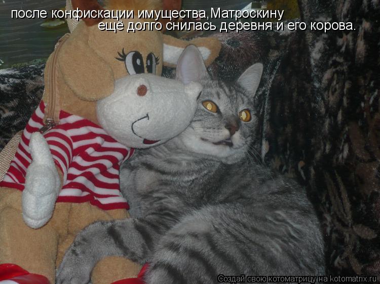 Котоматрица: после конфискации имущества,Матроскину ещё долго снилась деревня и его корова.