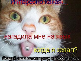 Котоматрица: Интересно какая... Интересно какая... нагадила мне на язык когда я зевал?