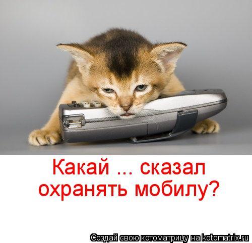 Котоматрица: Какай ... сказал охранять мобилу?