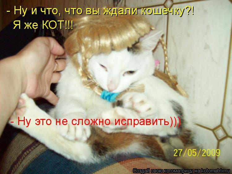 Котоматрица: - Ну и что, что вы ждали кошечку?!  Я же КОТ!!! - Ну это не сложно исправить)))