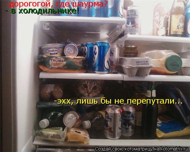 Котоматрица: -дорогогой, где шаурма? - в холодильнике! -эхх, лишь бы не перепутали...