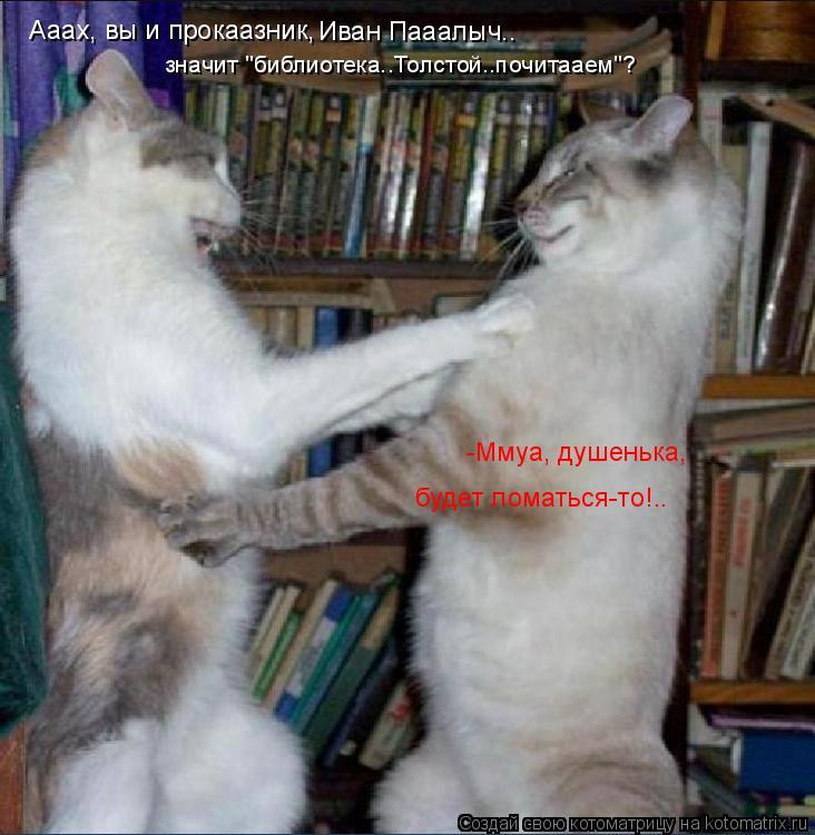 """Котоматрица: значит """"библиотека..Толстой..почитааем""""? Ааах, вы и прокаазник, Иван Пааалыч.. -Ммуа, душенька, будет ломаться-то!.."""