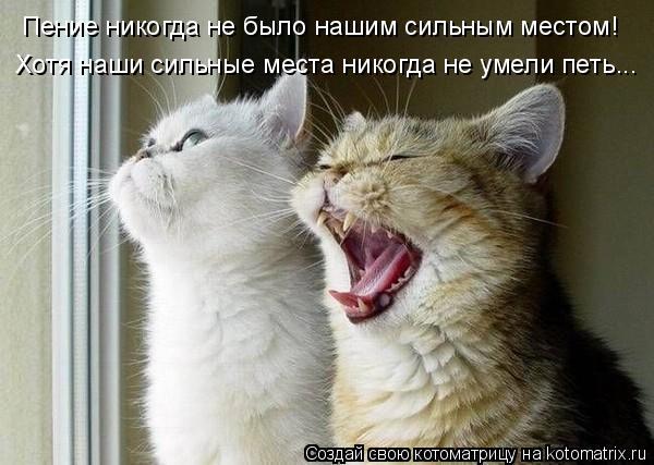 Котоматрица: Пение никогда не было нашим сильным местом!  Хотя наши сильные места никогда не умели петь...
