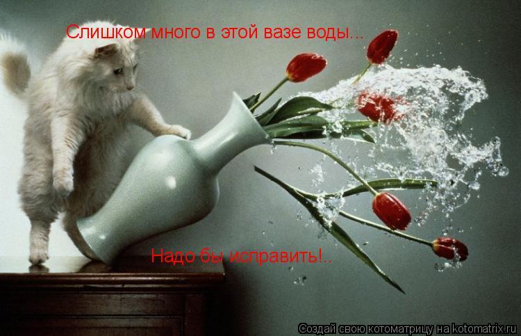 Котоматрица: Слишком много в этой вазе воды... Надо бы исправить!.. Надо бы исправить!..