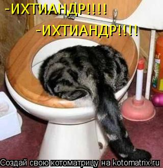 Котоматрица: -ИХТИАНДР!!!! -ИХТИАНДР!!!!