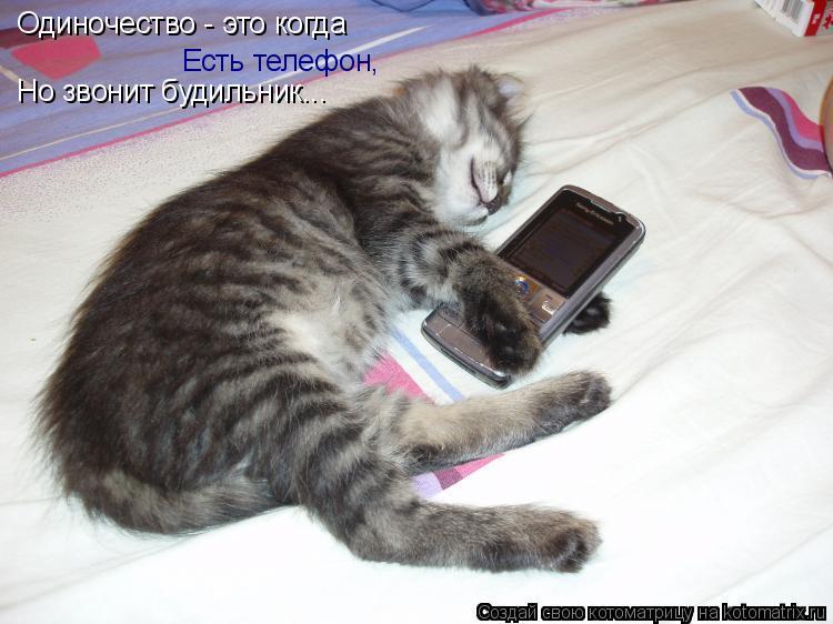 Котоматрица: Одиночество - это когда  Есть телефон, Но звонит будильник...
