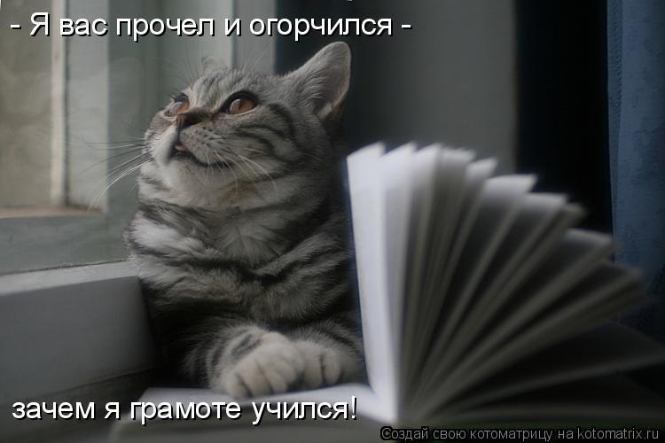 Котоматрица: - Я вас прочел и огорчился - зачем я грамоте учился!