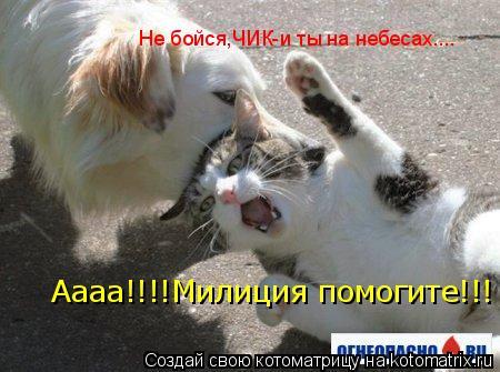 Котоматрица: Аааа!!!!Милиция помогите!!! Не бойся,ЧИК-и ты на небесах....