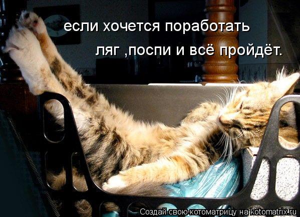 Котоматрица: если хочется поработать ляг ,поспи и всё пройдёт.