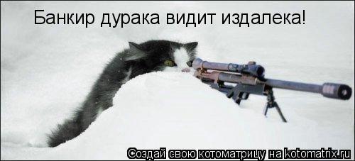 Котоматрица: Банкир дурака видит издалека!