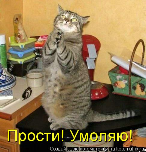 http://kotomatrix.ru/images/lolz/2009/05/28/_W.jpg