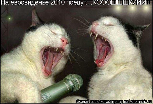Котоматрица: На евровиденье 2010 поедут....КОООШШШКИИИ!!