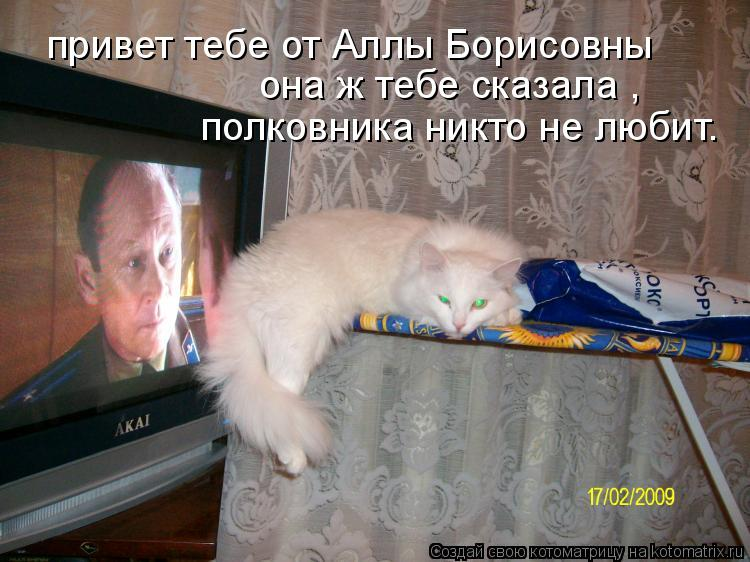 Котоматрица: привет тебе от Аллы Борисовны она ж тебе сказала , полковника никто не любит.