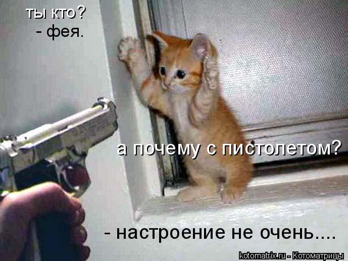 Котоматрица: ты кто? - фея. а почему с пистолетом? - настроение не очень....