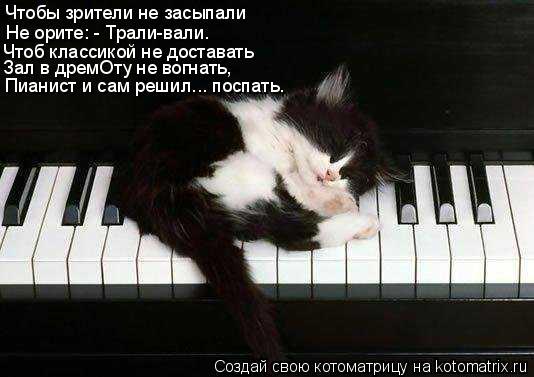 Котоматрица: Чтоб классикой не доставать Чтобы зрители не засыпали Не орите: - Трали-вали. Зал в дремОту не вогнать, Пианист и сам решил... поспать.