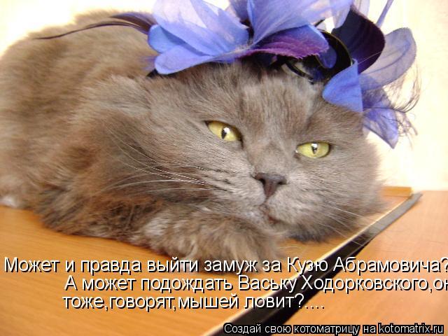 Котоматрица: Может и правда выйти замуж за Кузю Абрамовича?.....А может подождать Ваську Ходорковского,он тоже,говорят,мышей ловит?.... А может подождать Ва