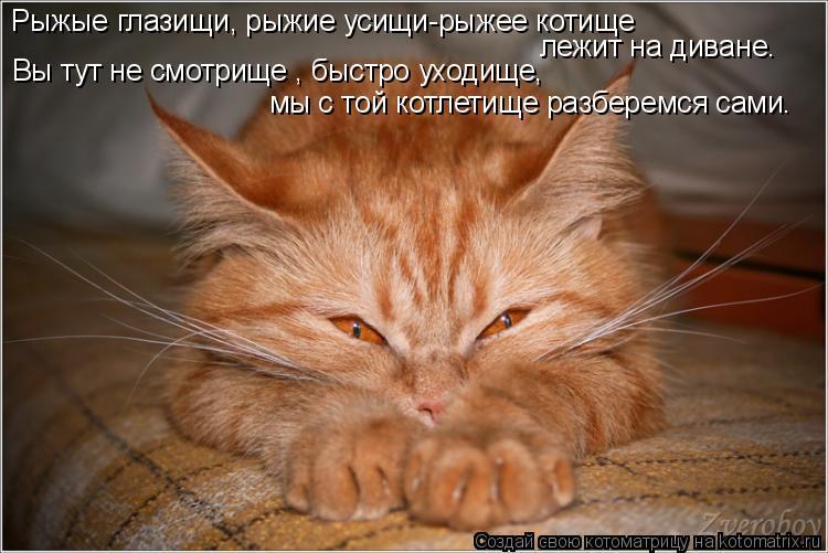 Котоматрица: Рыжые глазищи, рыжие усищи-рыжее котище лежит на диване. Вы тут не смотрище , быстро уходище,  мы с той котлетище разберемся сами.