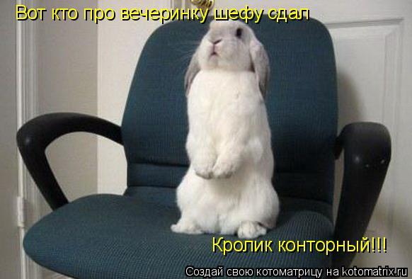 Котоматрица: Вот кто про вечеринку шефу сдал Кролик конторный!!!