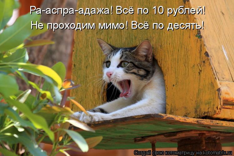 Котоматрица: Ра-аспра-адажа! Всё по 10 рублей!  Не проходим мимо! Всё по десять!