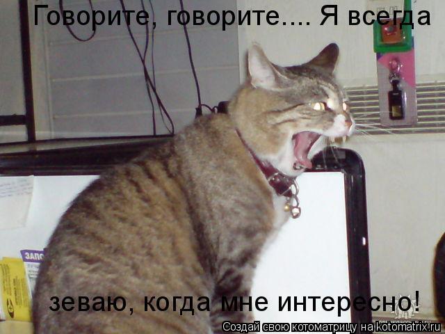 Котоматрица: Говорите, говорите.... Я всегда зеваю, когда мне интересно!