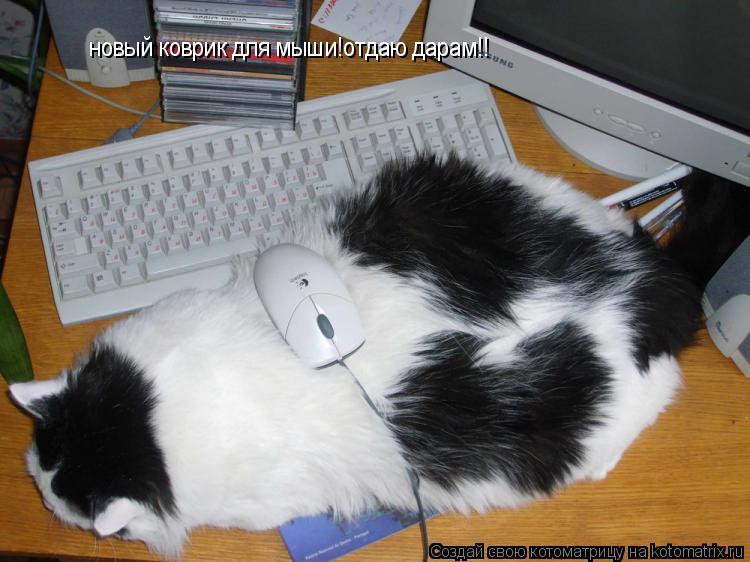 Котоматрица: новый коврик для мыши!отдаю дарам!!
