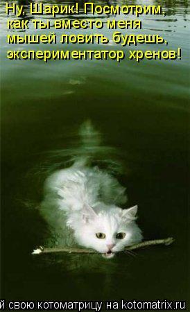 Котоматрица: Ну, Шарик! Посмотрим,  как ты вместо меня мышей ловить будешь,  экспериментатор хренов!