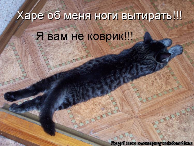 Котоматрица: Харе об меня ноги вытирать!!! Я вам не коврик!!!