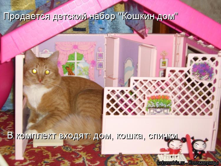 """Котоматрица: Продается детский набор """"Кошкин дом"""" В комплект входят: дом, кошка, спички"""